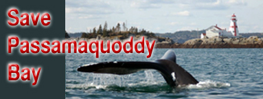 Save Passamaquoddy Bay